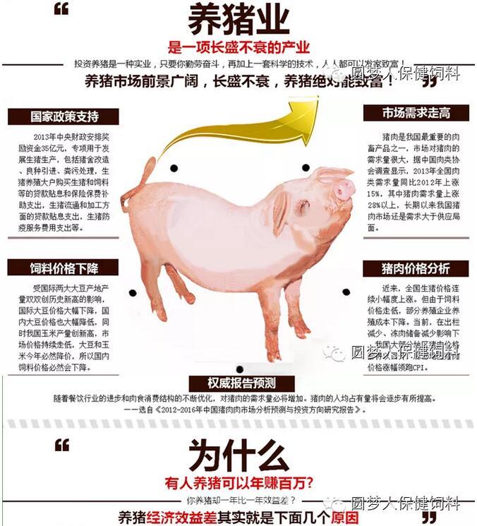 科学养猪技术大全,养猪贷款政策,养猪新技术,养猪技术大全,养猪技术视频,养猪,养猪场